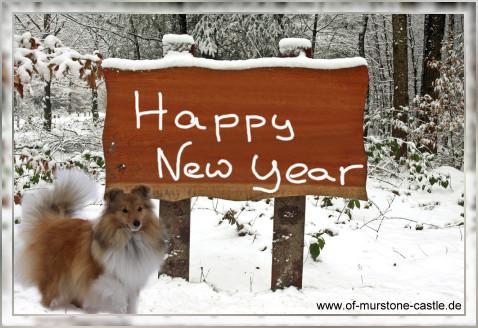 An den Beitrag angehängtes Bild: http://of-murstone-castle.de/Index/Geschenke/Geschenke_1/Happy_new_year.jpg
